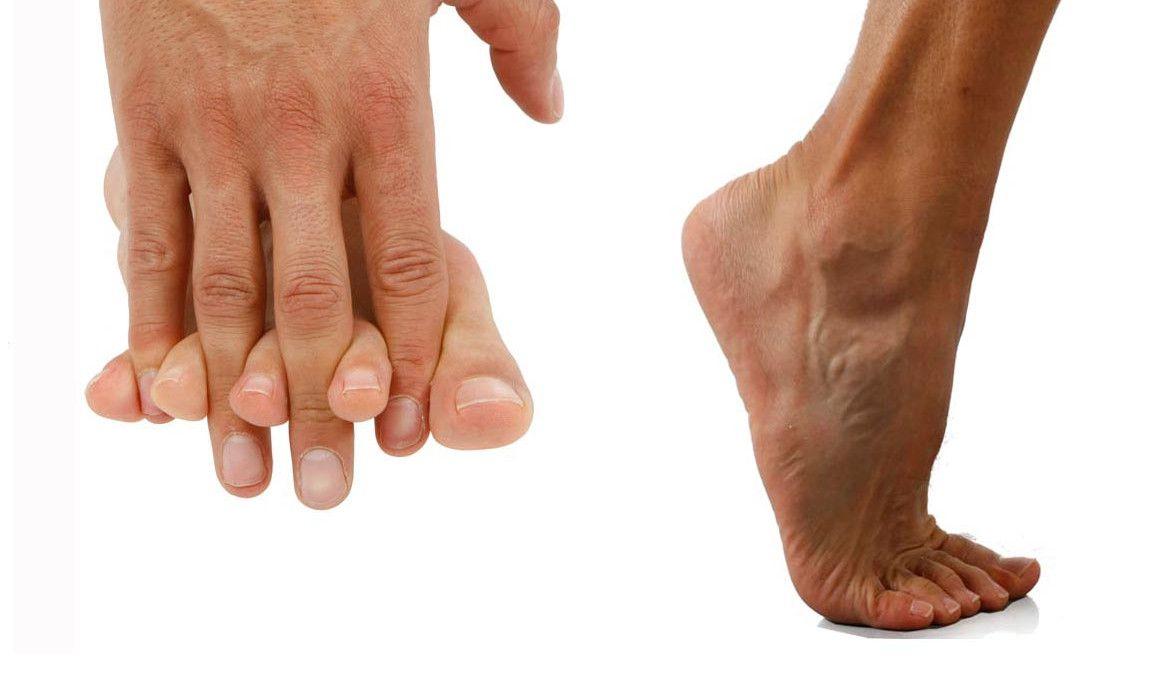 Dedos móviles para conseguir un pie hábil