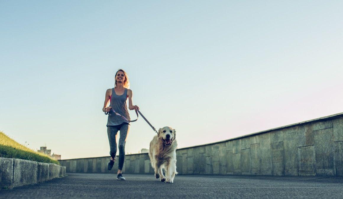 Claves para empezar a salir a correr con tu perro