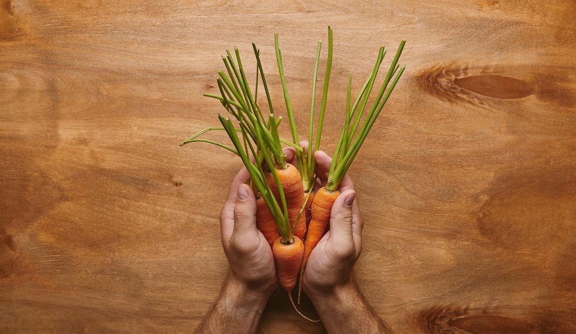 Beneficios y propiedades nutricionales de las zanahorias