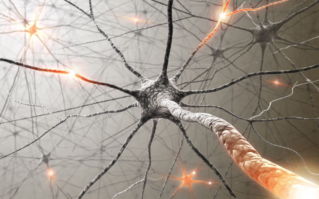Una nueva forma de tratar lesiones: neuromodulación funcional