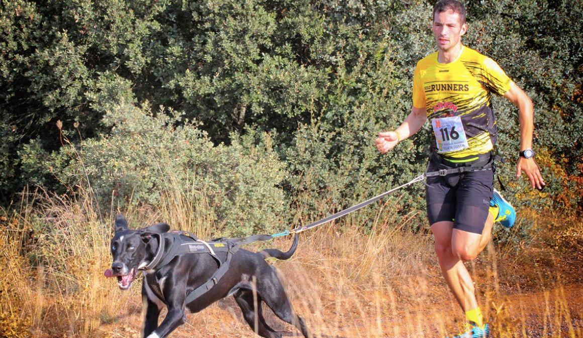 Canicross: correr a 30 kilómetros por hora es posible