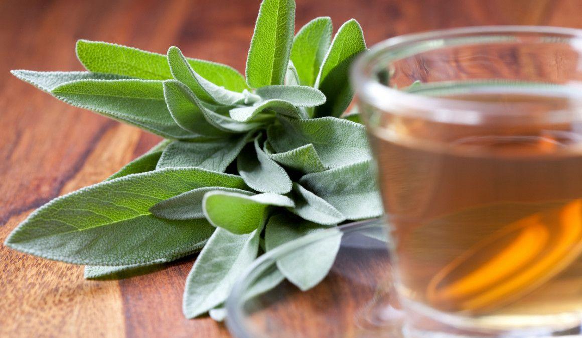 Salvia para aliviar los dolores menstruales