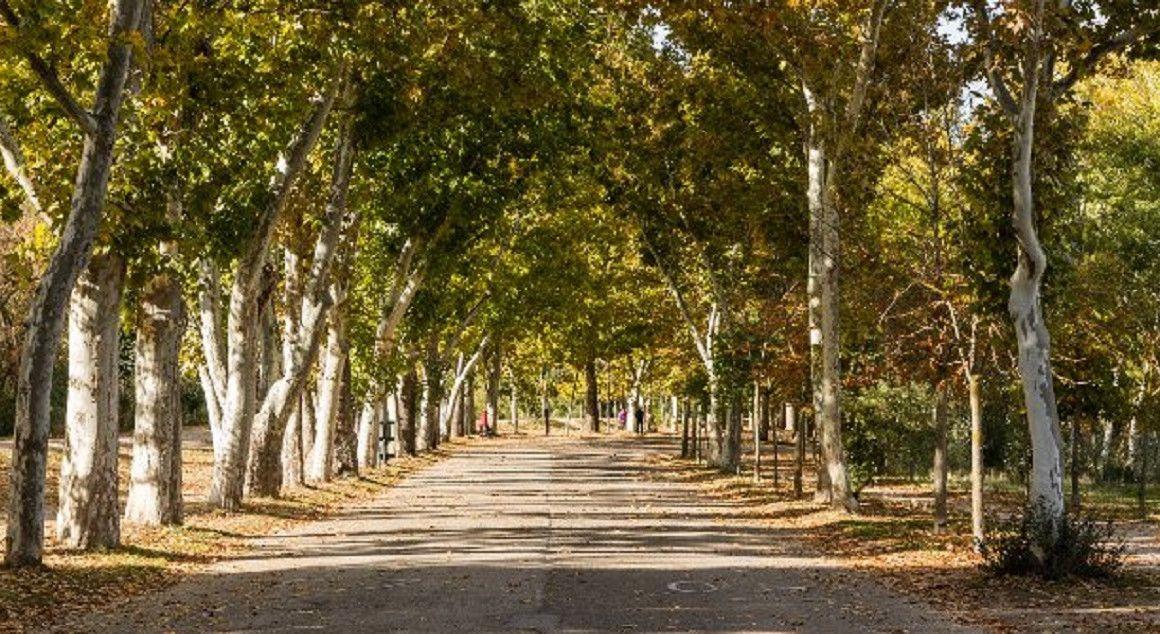 Parques de España: una buena opción para correr